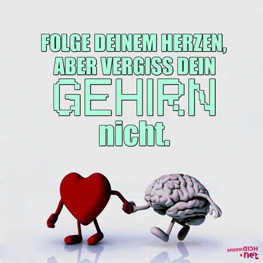 Herz vs. Verstand - Lyrik-Klinge