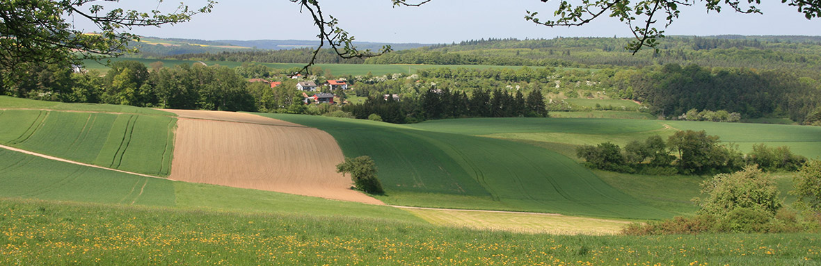 Wanderpfade in Hollerbach