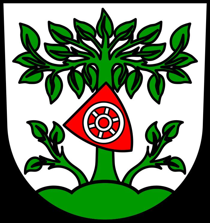 Buchen im Odenwald